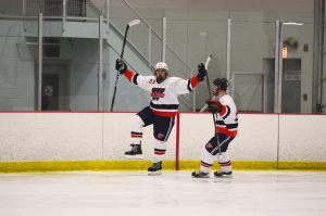 hockey celly